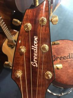Breedlove, two old hippies, acoustic electric, cutaway